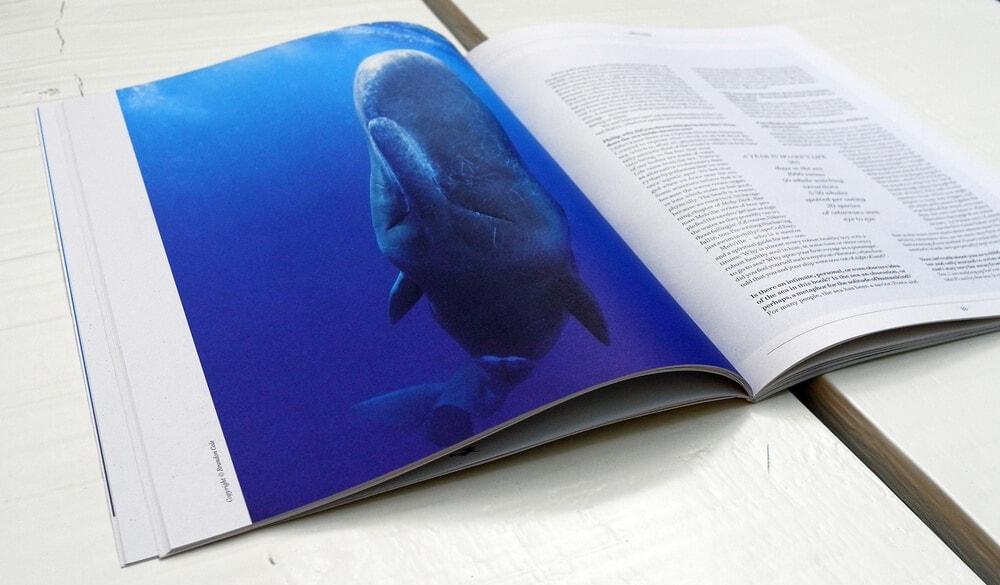 Sirene-Magazine-03